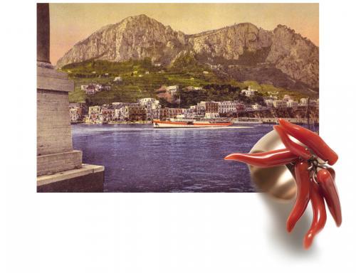 Anthozoa, ritorno a Capri